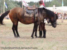 Hungarian Festival Stock 115 by CinderGhostStock