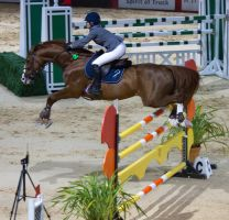 STOCK - Equitana 2013-386 by fillyrox