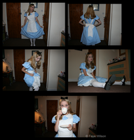 Alice Costume by Violet--Gypsy