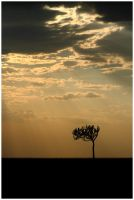 Sunset Over Masai Mara by GreenEyedHarpy