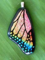 Rainbow Butterfly Wing Fused by FusedElegance