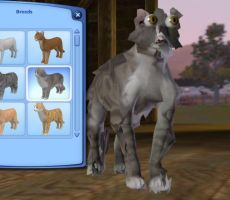 sims 3 cat glitch by Warriorcats222