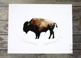 American Bison in Watercolor by Groovygirlsuzy17