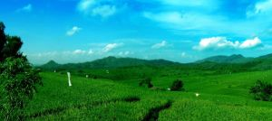 journey to east java_1 by yahya12