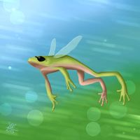 Flying frog by SabakuNoShi