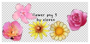 091004_flower5_by_eleven by eleven1627
