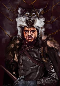 All Hail, King in the North by elyang