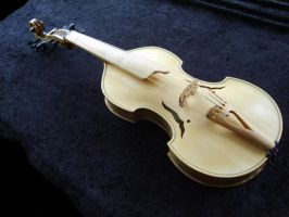 My finished Viola d'amore by deviantviolins