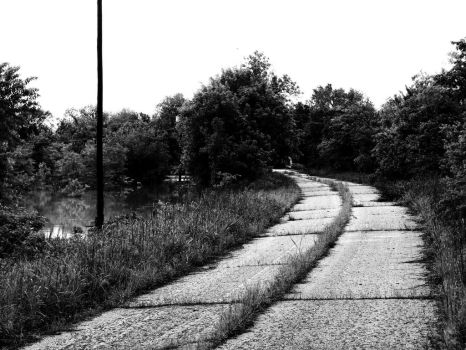 The Road Less Traveled by darkcravings23