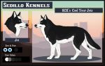 SCK's Cool Your Jets: Jet by Sedillo-Kennels