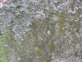 stone texture 2 by dark-dragon-stock