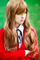 Toradora portraits - Taiga by updaterequired