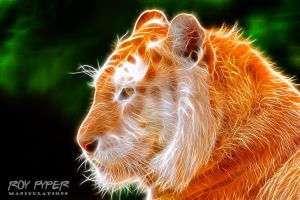 Golden Tiger: Fractalius Re-Edit by nerdboy69