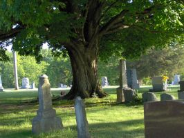 Cemetery stock 4 by bloodykisses56-stock