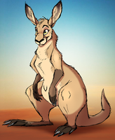 kangaroo by Mimi-fox