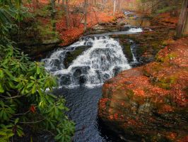Fall Falls3 by Seanna69