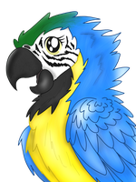 Blue and Gold Macaw by PrismaticStars