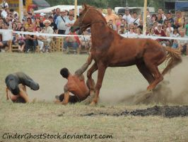 Hungarian Festival Stock 087 by CinderGhostStock