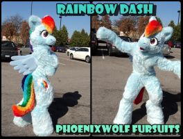 Rainbow Dash Costume by phoenixwolf33