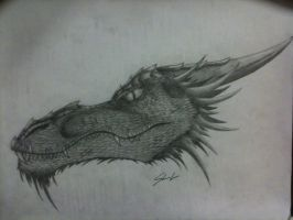 Dragon Head by ravage808
