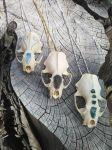 Real Skull Jewelry by HallucinogeniusVMJP
