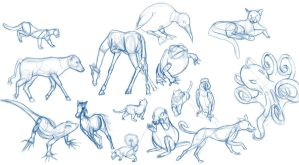 Animal Gesture Drawings by luvusagi