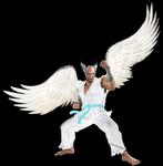 Angel Heihachi by NatlaDahmer
