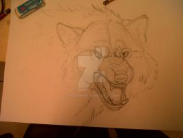 Snarling wolf by Isofur