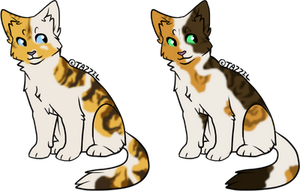 2 Cat Designs by SpottedAdopts