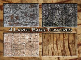 4 Large Bark textures 1 by Globaludodesign