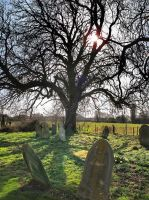 Graves Spaldwick Cambridgeshire by davepphotographer