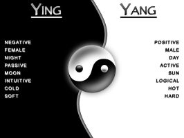 Ying Yang - Duality by PlayAirGuitar