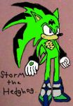 storm redesign by Casirethedragon11