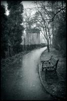 St Bernard's Well in the snow by blackwoodii