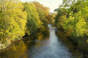River Derwent at Baslow by squareprismish
