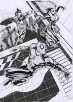 spiderman, black cat n captain by hirix