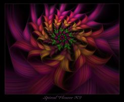 Spiral Flower XI by johnnybg