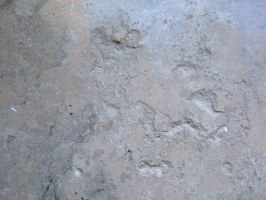 Smoothed Stone Texture 03 by Lengels-Stock