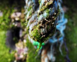 sea weed on rope by hazellucy