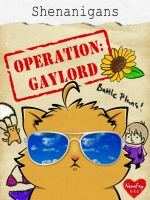 Hetalia: Shenanigans (Operation: Gaylord) by NanaFay
