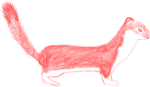 my first fuzzy weasel by flashdrvnk