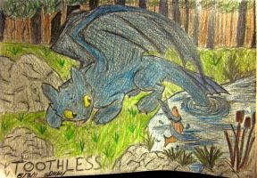 Toothless and friend by SophiePants