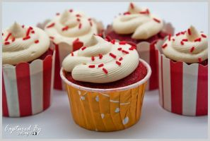 Red Velvet Cupcake 01 by PoodleSchmoodle