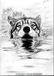 Bath Time For The Alpha Wolf by SnowWhirls