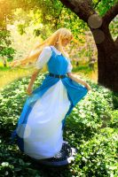 Link to the Past - Enchanted Princess by Midnight-Dare-Angel