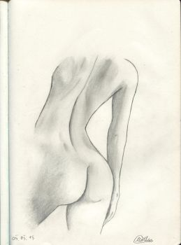 Artistic Nude Back by Padernoster
