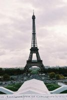 Eiffel Tower. by DavidBirch1987