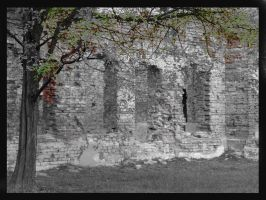 behind the old walls... by caligoisdead