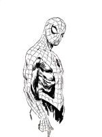 Sketches at NYCC 2014: SPIDERMAN by FrancescoTrifogli