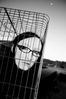 Put the girl in a pretty cage by sydneysomething